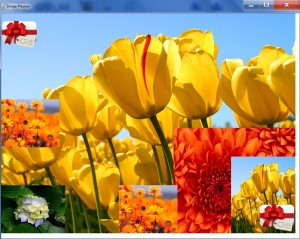 image_watermark_overlayseveralimages