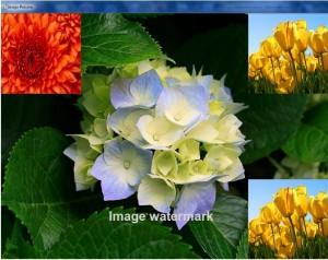 image_watermark_textandimage